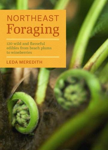 Leda Meredith - Northeast Foraging