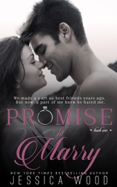 Promise to Marry book summary