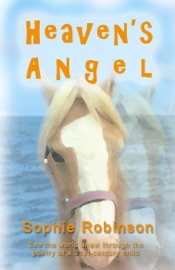 Heaven S Angel See The World Anew Through The Poetry Of A 21st Century Child