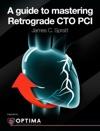 A Guide To Mastering Retrograde CTO PCI
