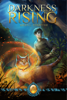 Meryl Yourish - Darkness Rising: Book One of The Catmage Chronicles  artwork