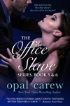 The Office Slave Series Book 5  6 Collection
