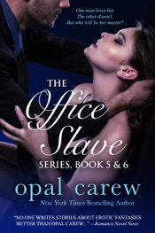 Download The Office Slave Series, Book 5 & 6 Collection