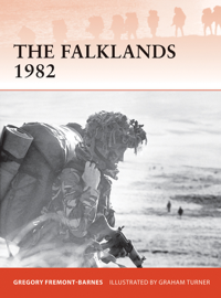 The Falklands 1982 book