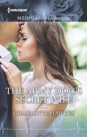 THE ARMY DOCS SECRET WIFE