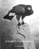 A Guide to Pencil Drawing