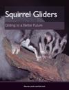 Squirrel Gliders