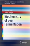 Biochemistry Of Beer Fermentation