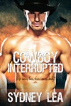 Cowboy Interrupted