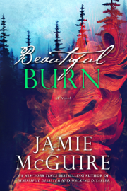 Beautiful Burn: A Novel book