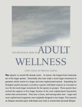 The Biological Basis Of Adult Wellness And Aging