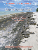 Marine Beachrocks