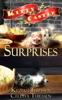 Surprises: Kitty Castle Series
