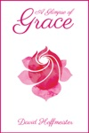 A Glimpse Of Grace