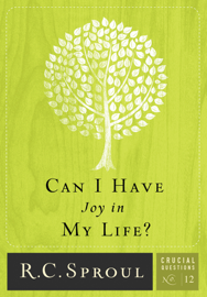 Can I Have Joy in My Life? book
