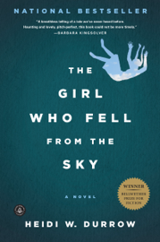 The Girl Who Fell from the Sky book