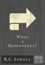 What is Repentance? book