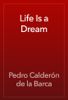Pedro CalderГіn de la Barca - Life Is a Dream artwork