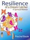 Resilience Of A Dream Catcher A Spiritual Memoir