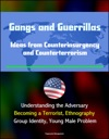 Gangs And Guerrillas Ideas From Counterinsurgency And Counterterrorism - Understanding The Adversary Becoming A Terrorist Ethnography Group Identity Young Male Problem