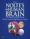 Noltes The Human Brain E-Book