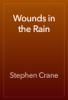 Stephen Crane - Wounds in the Rain artwork