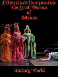 Literature Companion: The Good Woman of Setzuan