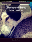 Greyhound Breed Information