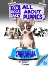 All About Chihuahua Puppies