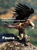 Fauna del Parque Nacional de la Sierra de Guadarrama