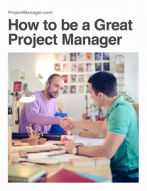 How to Be a Great Project Manager book