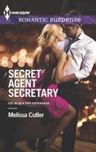 Secret Agent Secretary