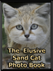 Big Cat Rescue -  The Elusive Sand Cat artwork
