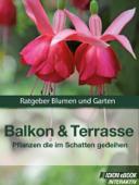 Balkon & Terrasse - Pflanzen die im Schatten gedeihen