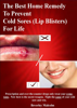 Beverley Malcolm - The Best Home Remedy To Prevent Cold Sores (Lip Blisters) For Life artwork