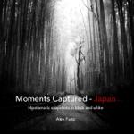 Moments Captured - Japan