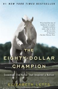 The Eighty-Dollar Champion Summary