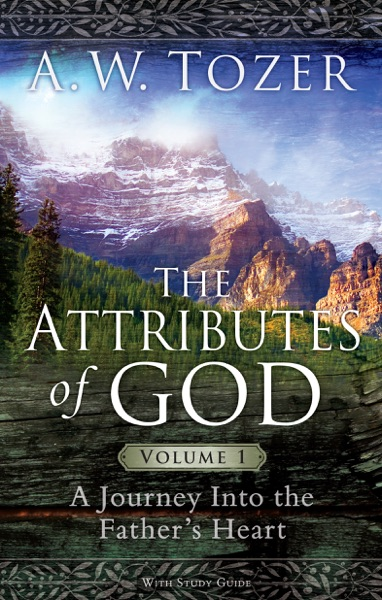 The Attributes of God Volume 1