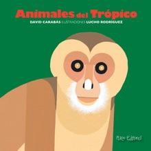 Animales Del Trópico