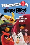 The Angry Birds Movie Meet The Angry Birds