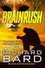 Richard Bard - Brainrush artwork