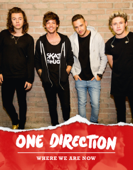 One Direction: Where We Are Now