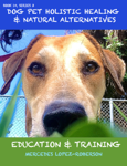 Dog Pet Holistic Healing & Natural Alternatives