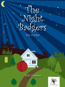 The Night Badgers - Play Cricket (2-6 Year Olds) Book Cover
