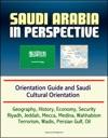 Saudi Arabia In Perspective Orientation Guide And Saudi Cultural Orientation Geography History Economy Security Riyadh Jeddah Mecca Medina Wahhabism Terrorism Wadis Persian Gulf Oil