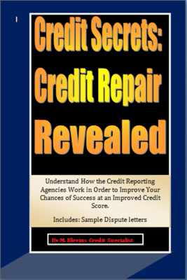 Credit Secrets: Credit Repair Reveled - M Blevins book