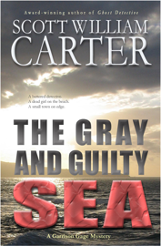 The Gray and Guilty Sea book