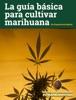 La guía básica para cultivar marihuana