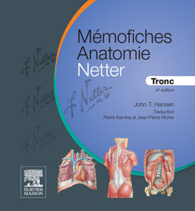 Mémofiches Anatomie Netter - Tronc Couverture de livre