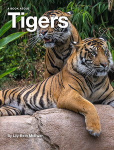 Tigers Book Review